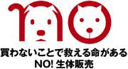 Say NOプロジェクト