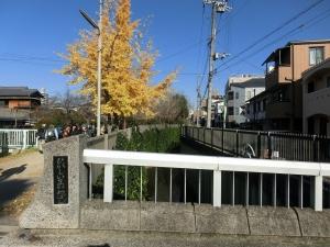 20151220_06東今川橋