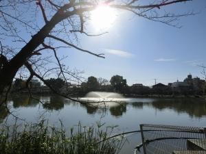 20151220_16万代池公園