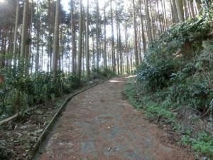 20151230_16高天彦神社参道