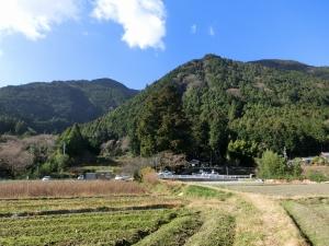 20151230_19高天彦神社参道