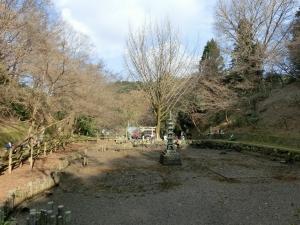 20160111_06蓮池
