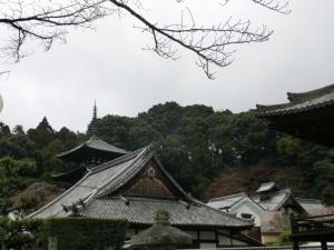 20160214_03當麻寺