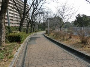 20160227_09千里東公園