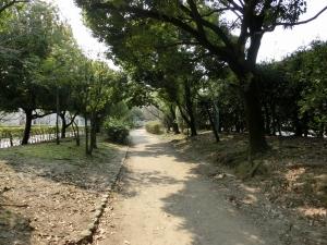 20160227_20元茨木川緑道