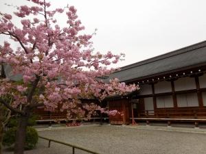 20160306_22東寺