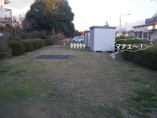 DSCF0185.jpg
