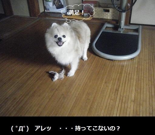DSCF0493.jpg
