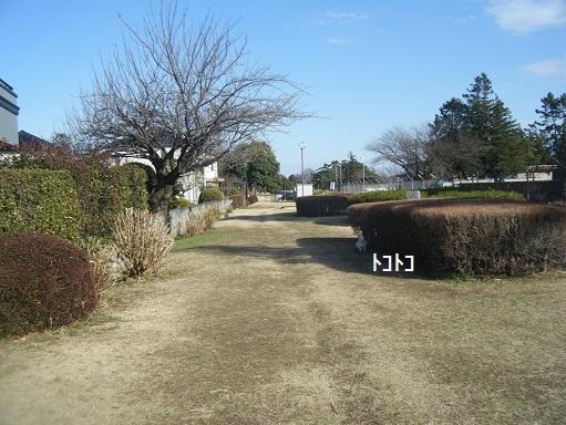 DSCF0765.jpg