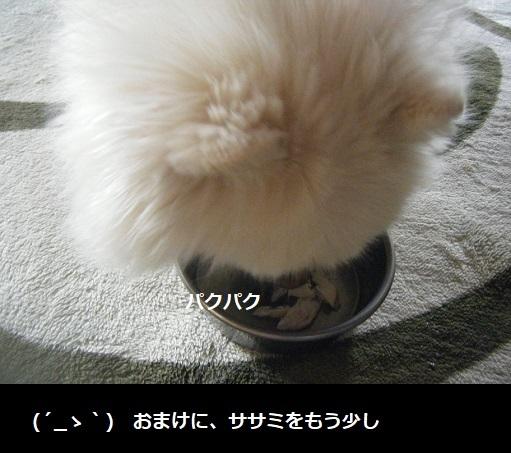 DSCF0861.jpg