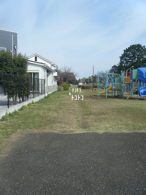 DSCF1072.jpg
