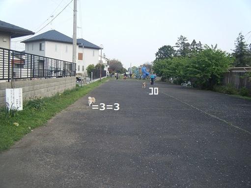 DSCF1105.jpg