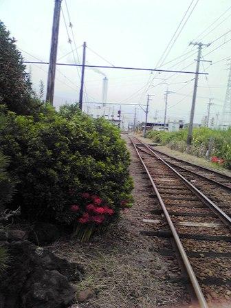 2015_09_28_御殿場・岳南・箱根SD1_300
