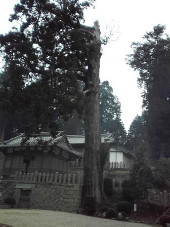 2015_01_06_大村神社_12