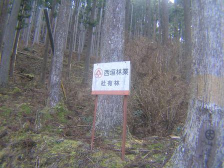 2016_01_11_川上山若宮八幡神社_016