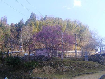 2016_01_11_川上山若宮八幡神社_171