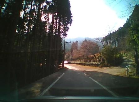 snapshot115115164.jpg