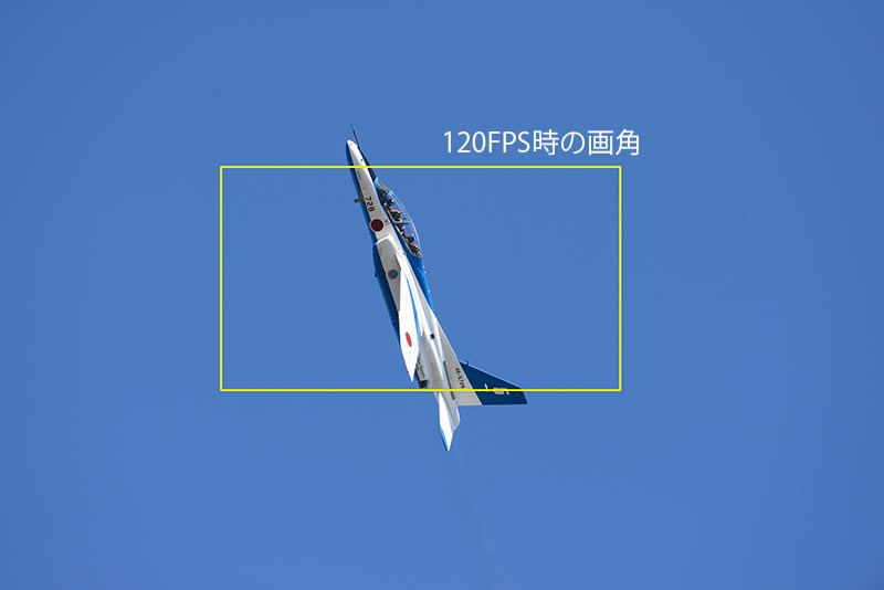 DSC_7819.jpg