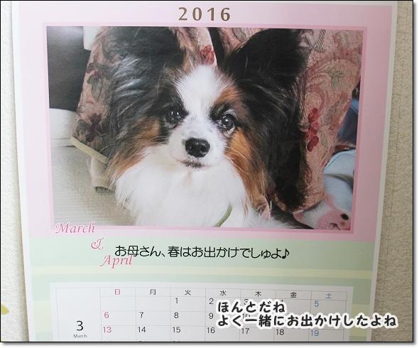 051-2_201603052259541df.jpg