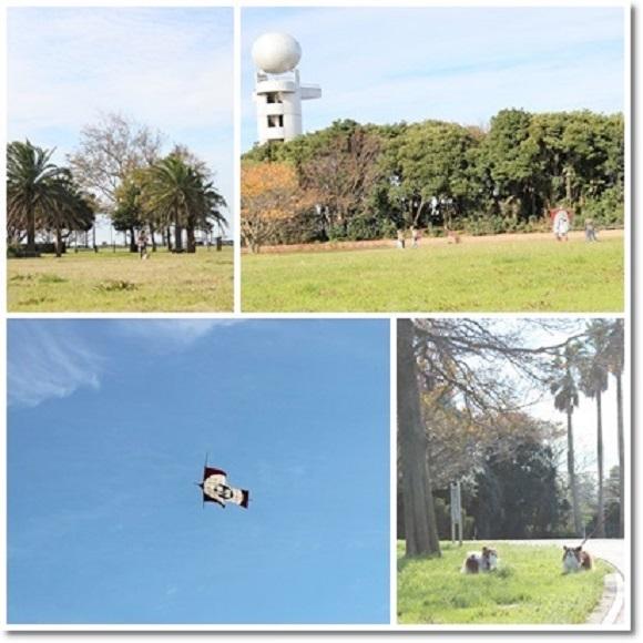 海浜公園3