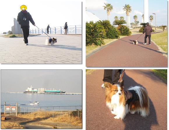 袖ヶ浦海浜公園2