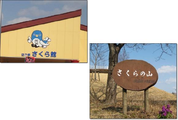 さくらの山公園2