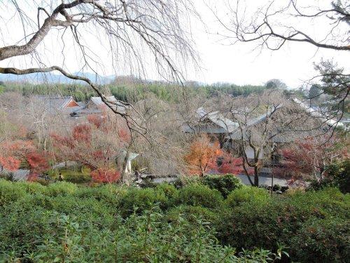 04天龍寺庭園