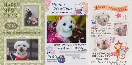 2016.01.10 可愛い年賀状-1