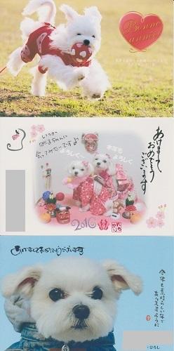 2016.01.10 可愛い年賀状-3