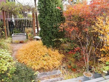 my-garden 056 (3)