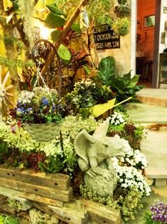 my-garden 159