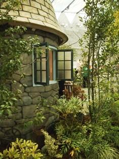 my-garden 151
