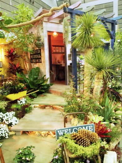 my-garden 157 (2)
