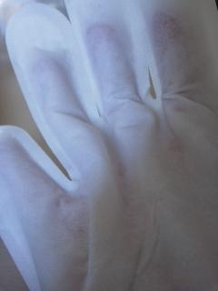 シャンプー手袋160202_1241~01