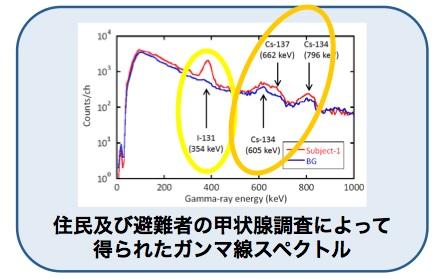 甲状腺スペクトル