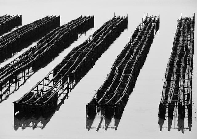 大芝大橋2