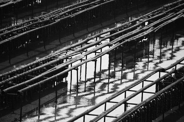 大芝大橋3