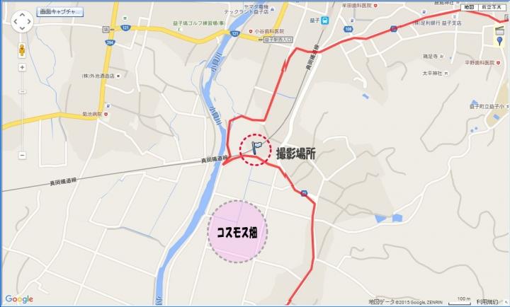 151101真岡鉄道コスモス畑