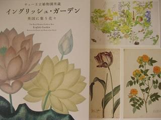 Kew植物画展