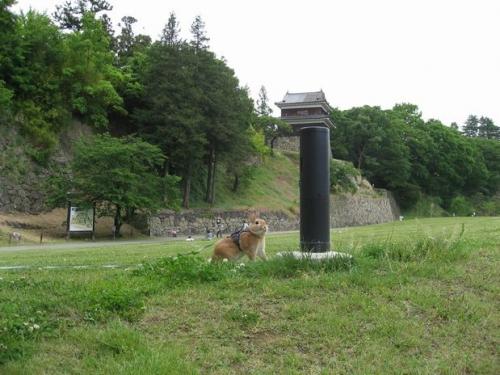 ue.20100529 上田城 002