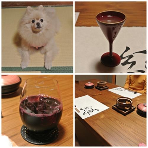 cats5_2015122721360920c.jpg