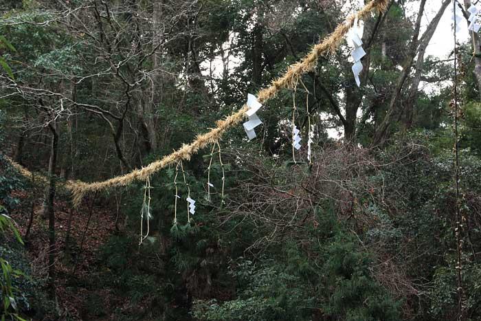 八坂神社 おんだ祭・綱かけ祭8