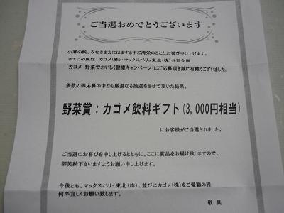 P1150162.jpg