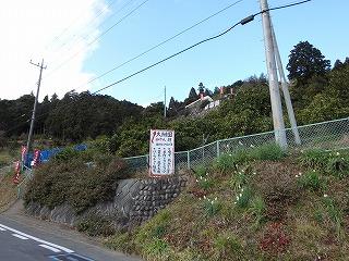 20160107099.jpg