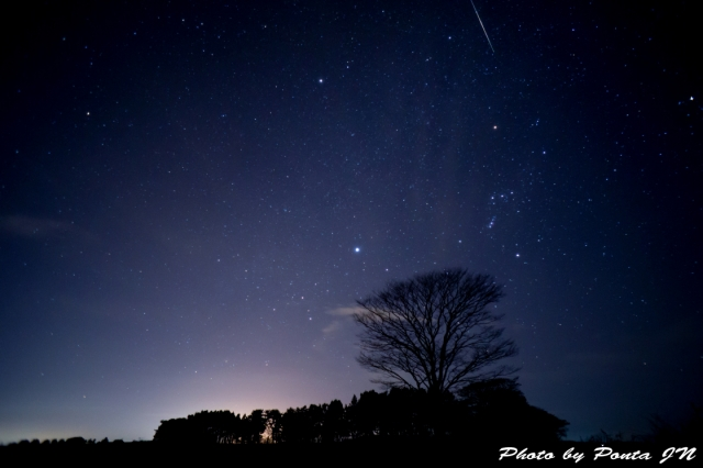 star1512-0007.jpg