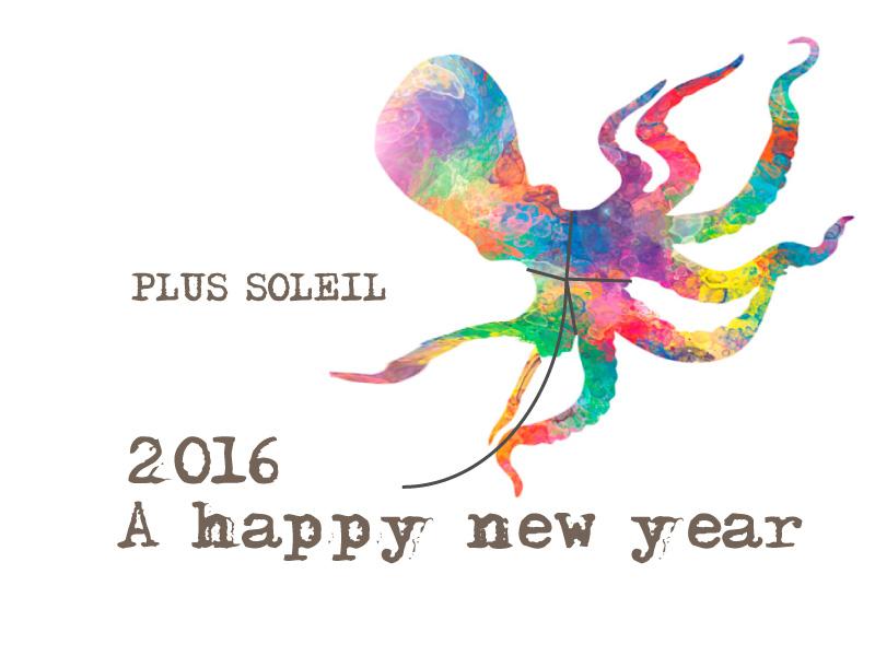 2016newyear.jpg
