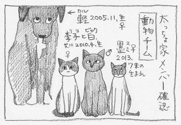 1_動物チーム