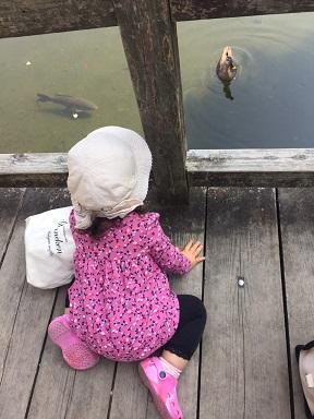 孫と公園へ2015、10月22日