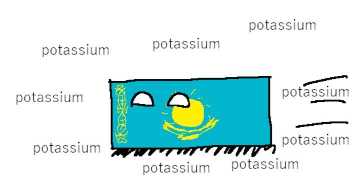 ポタジウム (2)