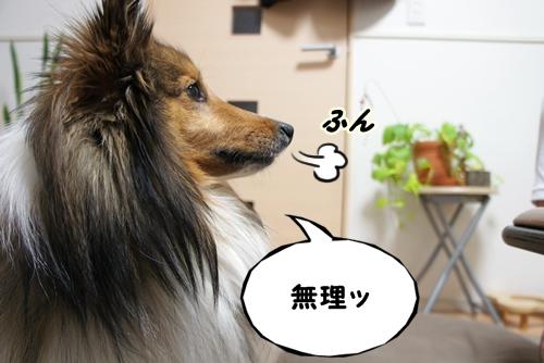 ぷりん10